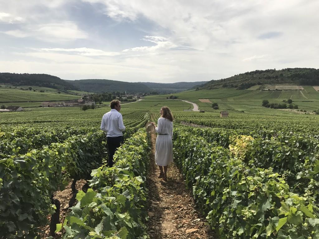 L'Oenotourisme «À la Française»