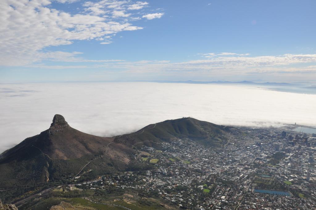 L'Afrique du Sud en famille avec African Trackers – Cape Town