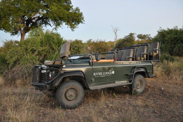 L'Afrique du Sud en famille avec African Trackers – Shanré et Percey