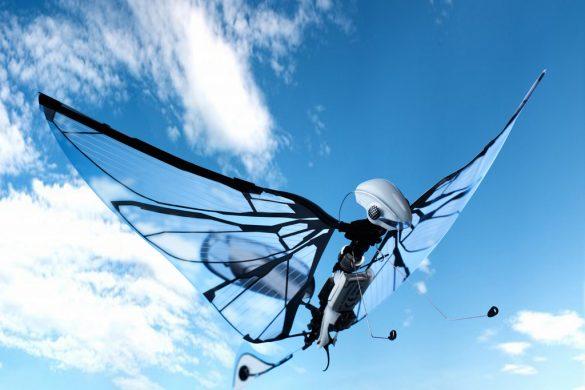 METAFLY, le 1er papillon volant biomimétique de BIONIC BIRD