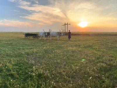 La Hongrie, destination verte pour le Printemps 2021